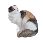 Scottish Fold Longhair Cat Statue