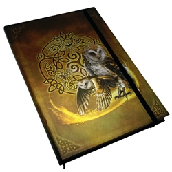 Celtic Owl Journal 11162